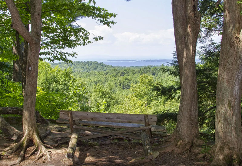 A bench with a great view along the trail